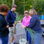 Partnership gives students hands-on learning opportunity