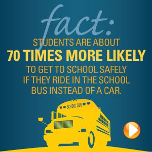 bus fact infographic