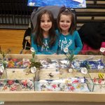 3rd annual Science Fair a great success
